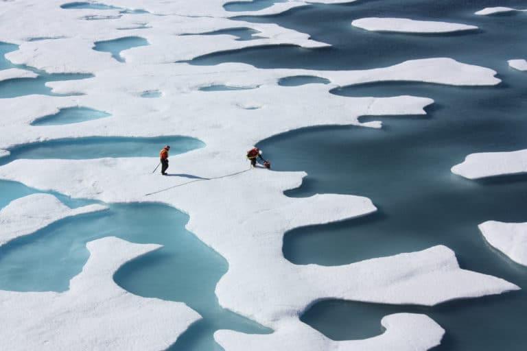 Cambiamenti climatici: il mare artico